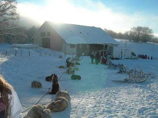 Plaisirs sur neige - Février / Ain