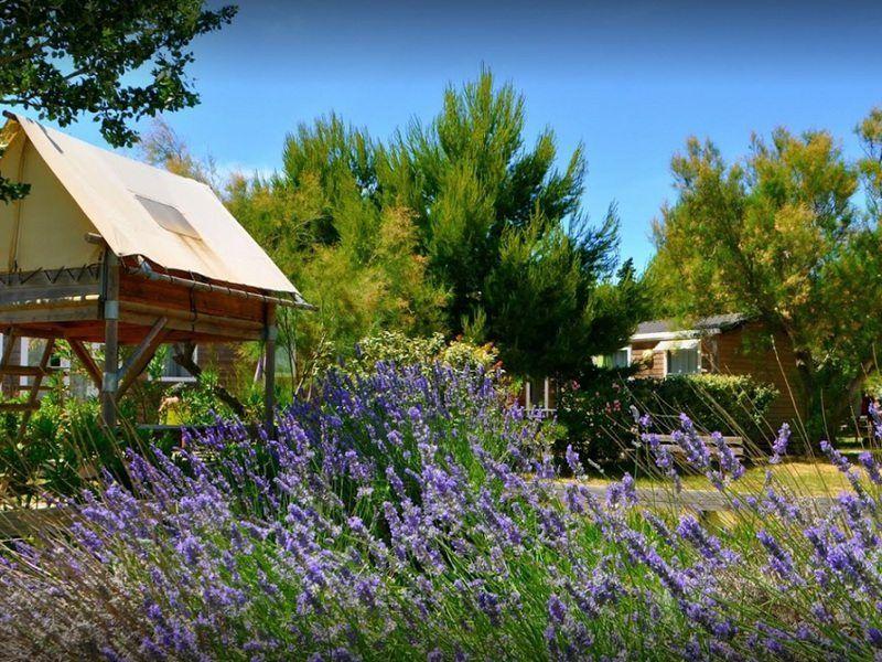 Camping Flower Domaine de la Palme